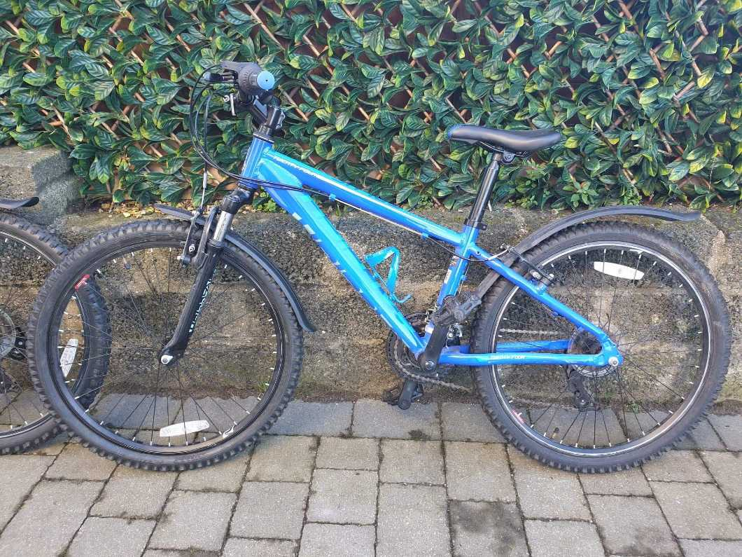 "Raleigh Talus 24"" bike"