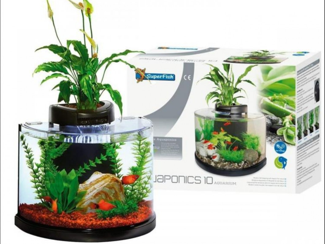 Super Fish Aquaponics Aquarium